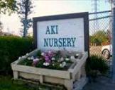Aki Nursery