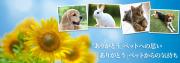 ペットメモリアルサービス - Pet Memorial Service