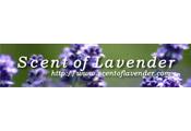 Scent of Lavender - Scent of Lavender